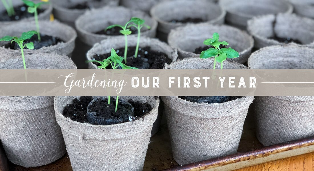 Our First Year Gardening In Central Oregon The Sage Hound